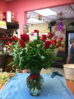 red rosas and filler