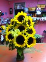 an arrangement in a vase with 9 of our fresh sun flowers